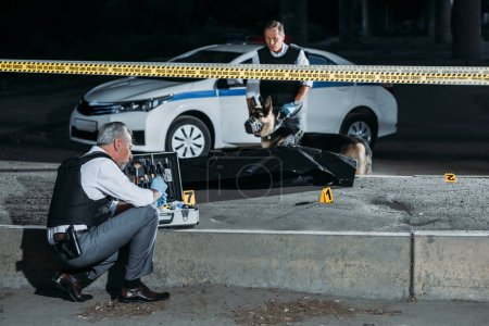 Photo for Focused mature policeman sitting with case for investigation tools while his colleague with alsatian on leash standing near corpse in body bag at crime scene - Royalty Free Image