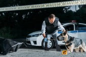 male poice officer holding dog on leash near car at crime scene with corpse in body bag