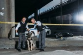 mature police officer pointing by finger to colleague with dog on leash near cross line at crime scene