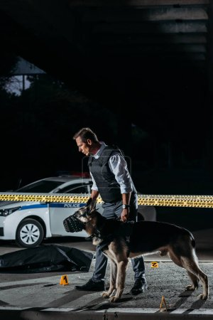 policeman holding german shepherd on leash near cross line at crime scene with corpse in body bag
