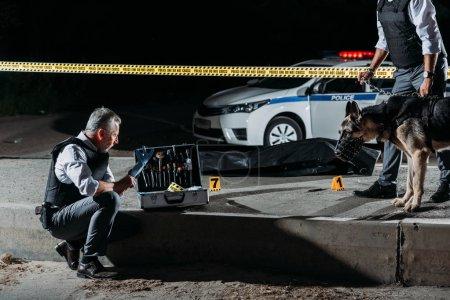 Foto de Madurito policía ponerse guantes de látex junto a la caja de herramientas de investigación mientras que su colega de pie junto con el perro con correa en la escena del crimen con el cadáver - Imagen libre de derechos