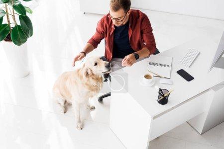Photo pour Golden retriever assis sur le plancher près d'affaires dans le bureau moderne - image libre de droit