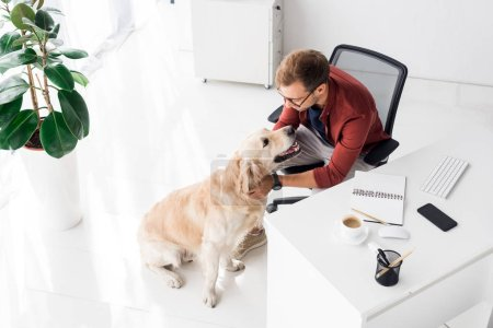 Photo for Businessman sitting on chair and stroking dog in office - Royalty Free Image