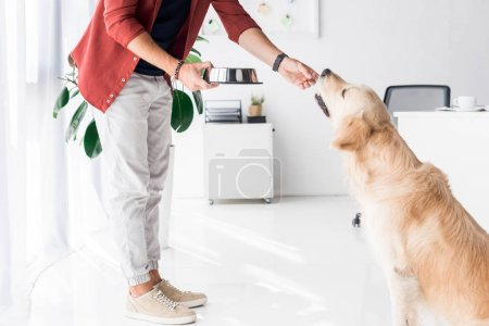 cropped view of man feeding golden retriever dog by workspace