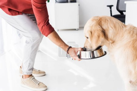 cropped view of man feeding golden retriever dog from metal bowl