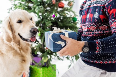 man in christmas sweater giving blue gift box to dog