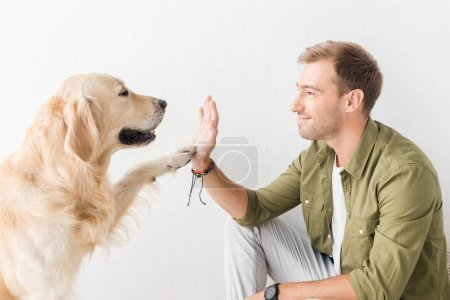 golden retriever dog giving five to happy man against white wall