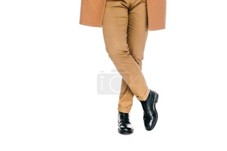 cropped shot of man in stylish pants, leather shoes and brown overcoat standing isolated on white