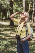 """Постер, картина, фотообои """"молодой турист с фотоаппаратом и рюкзак, глядя в парке"""""""