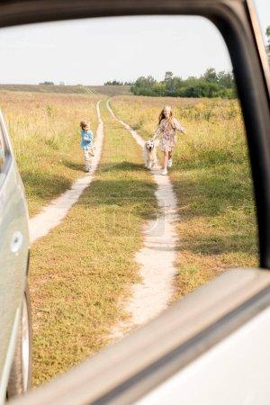 adorables petits enfants à pied par la route dans le champ avec golden retriever avec voiture sur premier plan