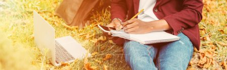 cropped view of freelancer working with laptop, smartphone and documents in park with sunlight