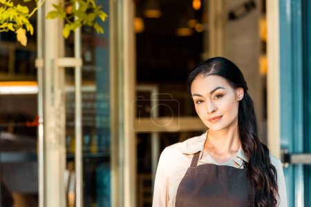 portrait of beautiful waitress in apron looking at camera near cafe