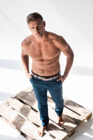Photo for High angle view of shirtless handsome adult man standing on pallet on white and looking at camera - Royalty Free Image