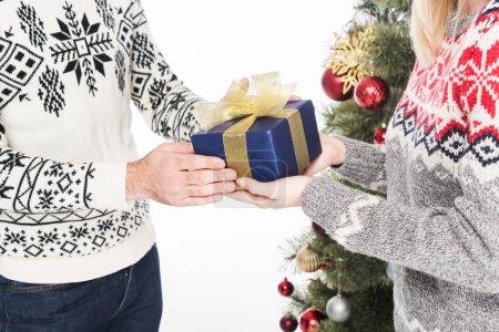 recadrée tir d'homme présentation cadeau enveloppé à la copine de sapin isolé sur blanc