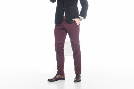 cropped shot of man in fashionable suit isolated on white