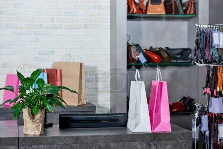 Photo pour Sacs en papier et une plante en pot verte dans la boutique - image libre de droit