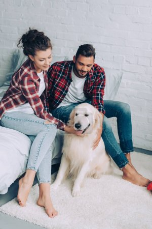 high angle view of couple in checkered shirts petting adorable golden retriever in bedroom at home