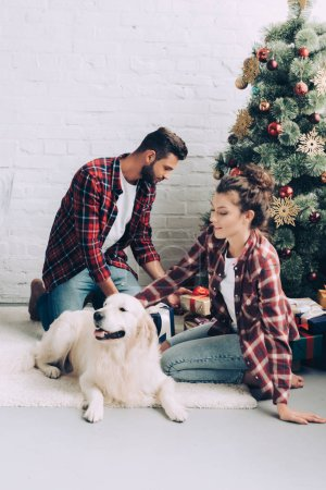 Photo for Young woman petting adorable golden retriever while her boyfriend putting gift box under christmas tree at home - Royalty Free Image