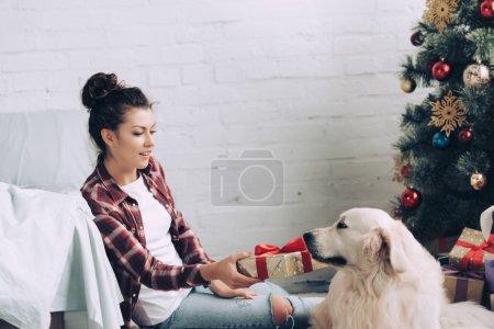 young woman giving christmas gift box to adorable golden retriever at home