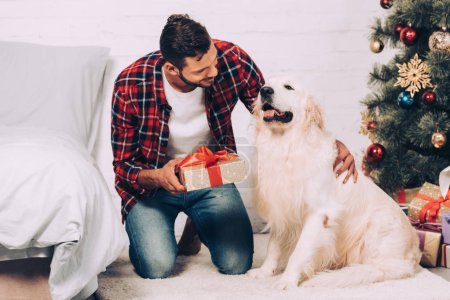 Photo for Selective focus of smiling young man holding christmas gift box near adorable golden retriever at home - Royalty Free Image