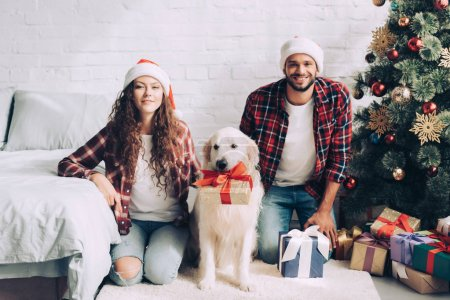 happy young couple in santa hats and golden retriever with gift box in mouth on christmas at home