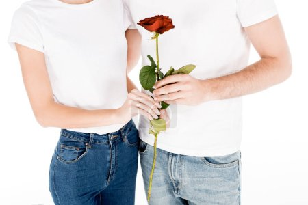 Partial view of Beautiful couple with red rose flower isolated on white