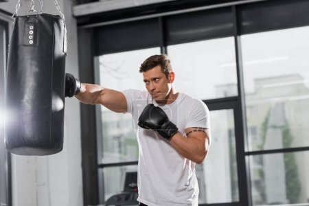 handsome muscular boxer training with punching bag in gym