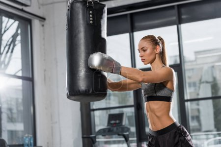 attractive athletic boxer training with punching bag in gym