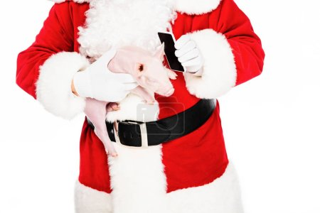 cropped shot of santa claus holding piggy in hand and giving her phone for talk isolated on white