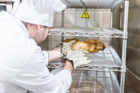 Photo for Male baker in white chefs uniform putting fresh hot bread at rack - Royalty Free Image