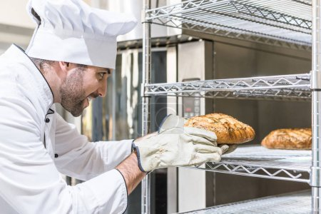 Side view of chef taking freshly baked bread from shelf
