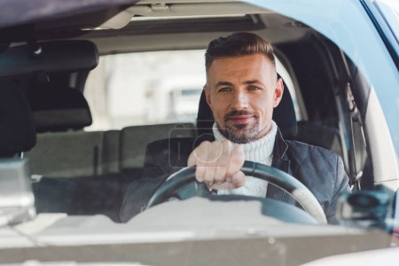 Cheerful man sitting in car and holding steer