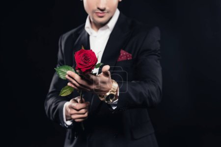 cropped view of man in suit holding red rose isolated on black