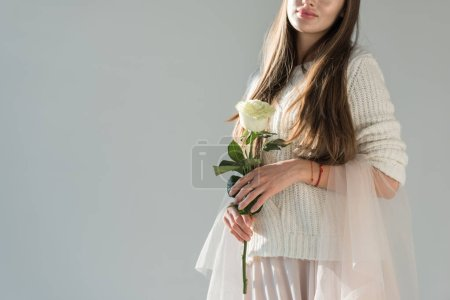 cropped image of woman in fashionable winter outfit holding white rose isolated on grey