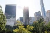 """Постер, картина, фотообои """"Городские сцены с зелеными деревьями и архитектура города Нью-Йорк, США"""""""