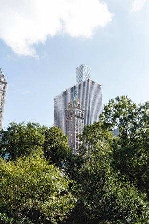 scène urbaine avec des arbres verts et architecture de la ville de new york, é.-u.