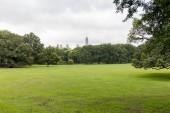 """Постер, картина, фотообои """"живописный вид на зеленые деревья и трава в городском парке в Нью-Йорке, США"""""""