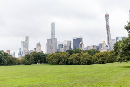 Photo pour Scène urbaine avec des arbres dans le parc de la ville et les gratte-ciel de new york, é.-u. - image libre de droit
