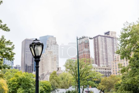 Photo for Urban scene with trees in city park and skyscrapers in new york, usa - Royalty Free Image