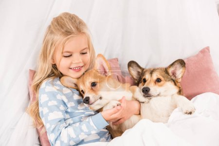 Photo for Adorable child lying in bed and hugging pembroke welsh corgi dogs at home - Royalty Free Image