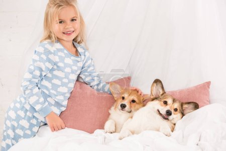 Photo for Adorable child looking at camera and stroking pembroke welsh corgi dogs lying in bed - Royalty Free Image
