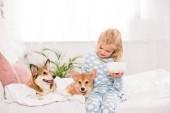 """Постер, картина, фотообои """"очаровательны ребенка, сидя на кровати с собаками Вельш корги пемброк и проведение чаша зерновых на дому"""""""