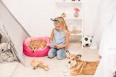 """Постер, картина, фотообои """"милый ребенок сидел дома с собаками Вельш корги и записи в записной книжке"""""""