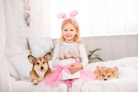 Photo for Cute child in bunny ears headband sitting with welsh corgi dogs and holding pink roses on bed at home - Royalty Free Image