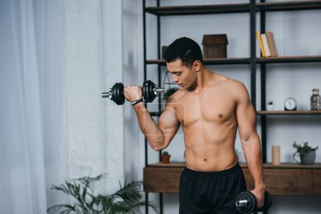 Photo for Handsome bi-racial man looking at muscles while exercising with dumbbells in home gym - Royalty Free Image