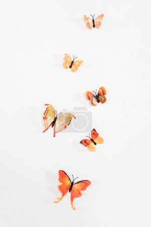Photo for Orange butterflies flying isolated on white, environmental saving concept - Royalty Free Image