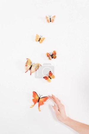 Photo pour Vue recadrée de la main féminine près de papillons orange volant sur fond blanc, concept de sauvegarde de l'environnement - image libre de droit