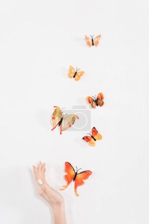 Photo for Cropped view of female hand near butterflies flying on white background, environmental saving concept - Royalty Free Image