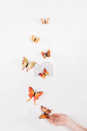 Photo pour Vue recadrée de la femme libérant des papillons orange sur fond blanc, concept de sauvegarde de l'environnement - image libre de droit