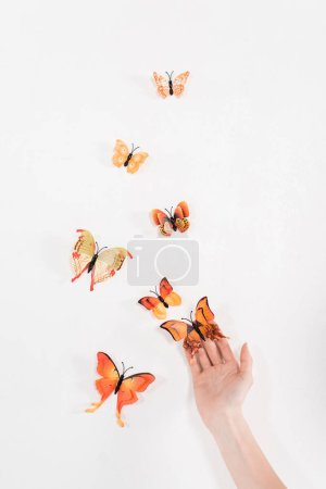 Photo pour Vue recadrée de la femme libérant des papillons sur fond blanc, concept de sauvegarde de l'environnement - image libre de droit